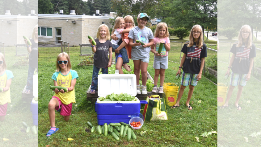 Young gardeners from the Birchwood Nature Park and Garden Club show off their produce.