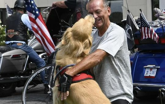 U.S. Army veteran Jimmy Thomas is reunited with his service dog, Boots, following a 2.5 month cross-country bicycling trip.