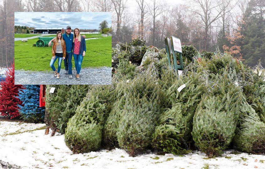 Inset: New owners of Ellms Family Farm Sasha Ellms Presessien, Garth Ellms and Ashley Ellms DiPaola; Background: Trees at Ellms