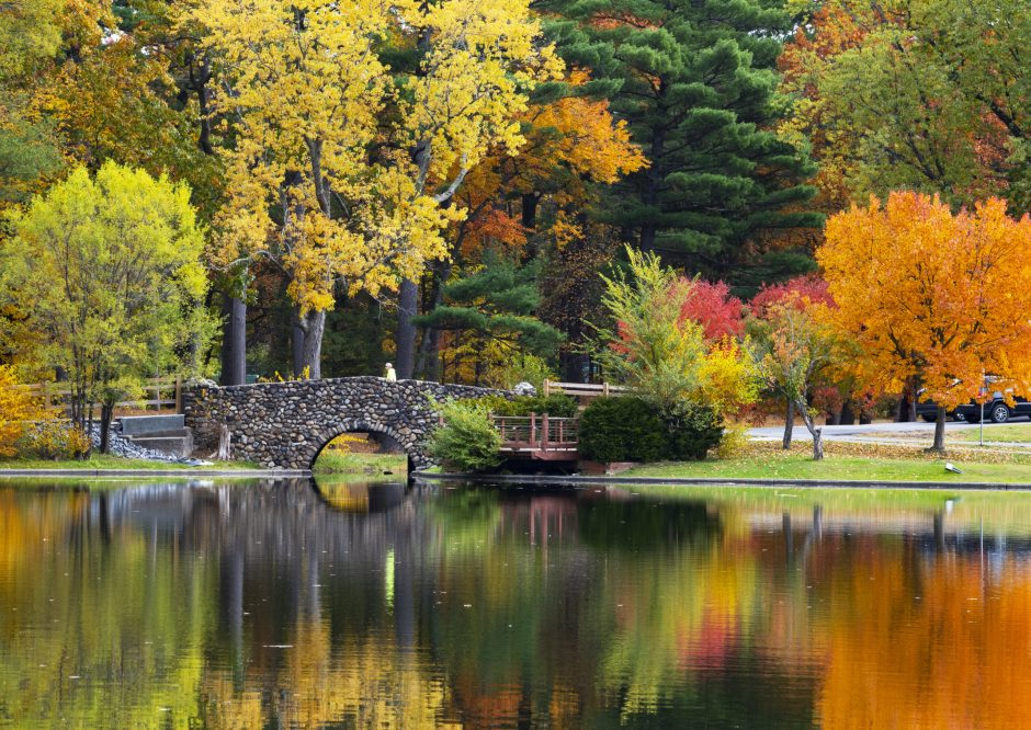 The trees are a blaze of color reflected on Iroquois Lake in Central Park Friday, October 25, 2019.