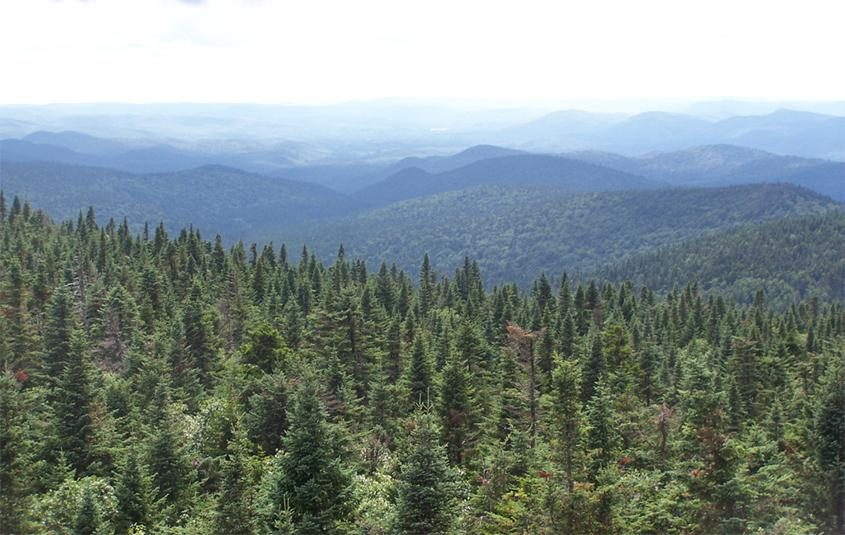 All three forests to see improvements sit just outside the boundary of the Adirondack Park, pictured here.