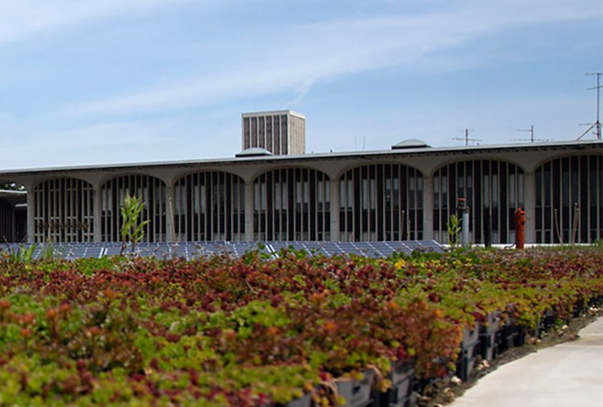 A building on the academic podium at the University at Albany is seen in a file photo.