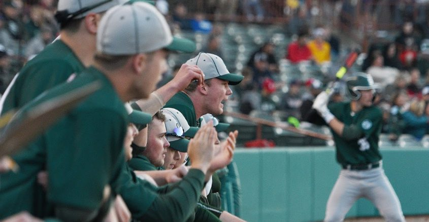 Shenendehowa baseball players yell from the dugout during last year's Section II Class AA championship game against Niskayuna.