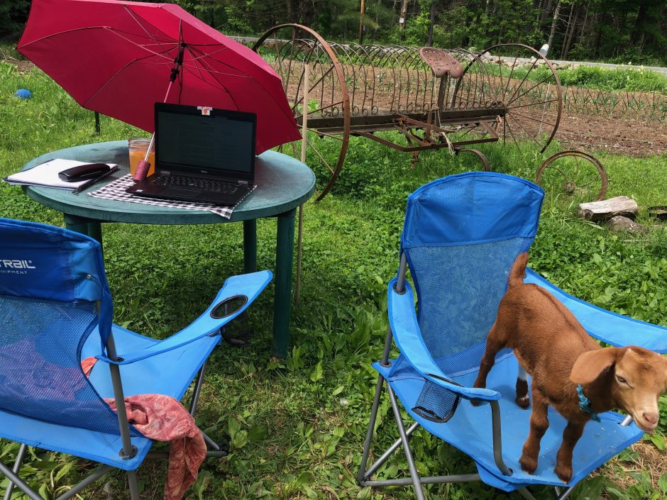 With summer moving in, the home office looks a little different — but the work still gets done.