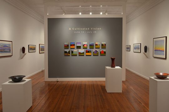 "An installation photo of the exhibit ""A Cultivated Vision"" at the Laffer Gallery in Schuylerville."