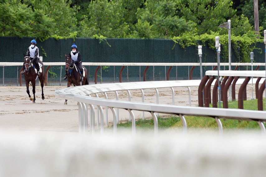 Horses jog on the main track at Saratoga, which has been refurbished with a new safety rail and improved drainage.