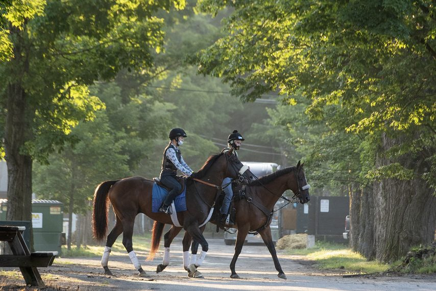 Tom's d'Etat, left, walks back to trainer Al Stall's barn after stretching his legs on the Saratoga main track on Wednesday.
