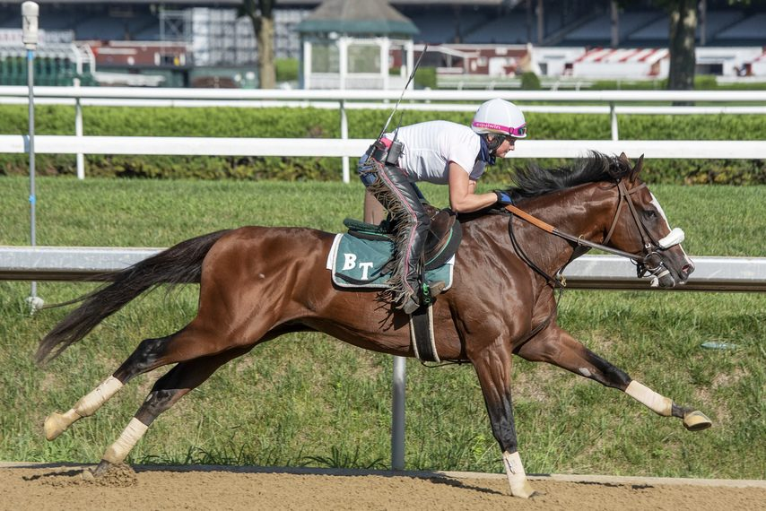 Tiz the Law, with Heather Smullen in the irons, works five furlongs on the Saratoga main track on Saturday.