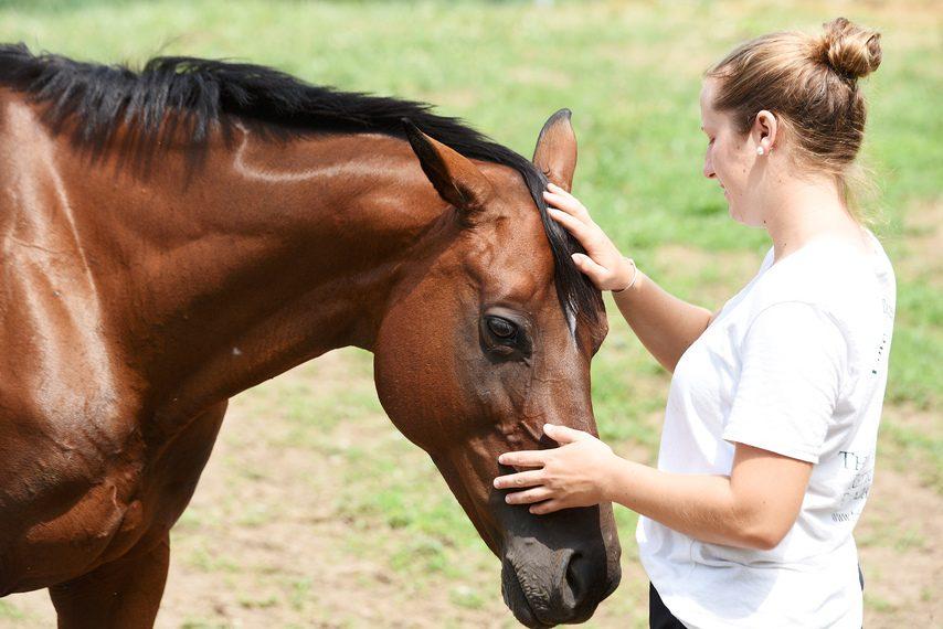 TRF summer intern Danielle Beinars pets Supurb Suprize at Bloomfield Farm last summer.
