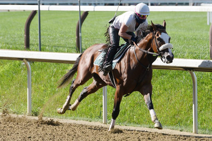 Tiz the Law and exercise rider Heather Smullen roll through a five-furlong breeze on the Saratoga main track on Saturday.