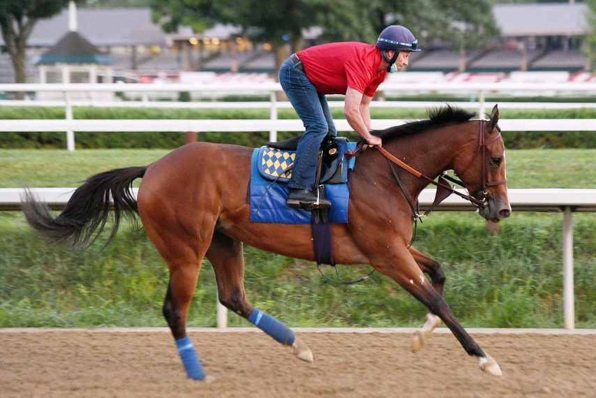 Test favorite Gamine gallops on the Saratoga main track under exercise rider Simon Harris on Thursday.