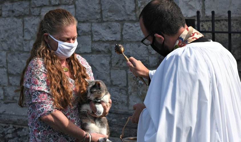 """Rev. Neal Longe gives a blessing to Kitty """"V"""", held by Allison Elliott from Fort Hunter during Sunday's St. Francis Day Blessing of the Animals at St. Ann's Episcopal Church in Amsterdam."""