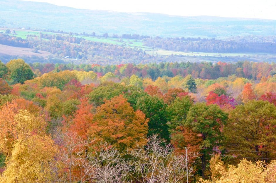 The Mohawk Valley is awash in brilliant yellows, reds, oranges and greens on a sunny fall day.