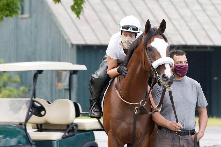 ERICA MILLER/STAFF PHOTOGRAPHER Tiz the Law and assistant trainer Robin Smullen, with groom Juan Barajas, wait for their turn to get on the Saratoga main track for a gallop on Aug. 22.