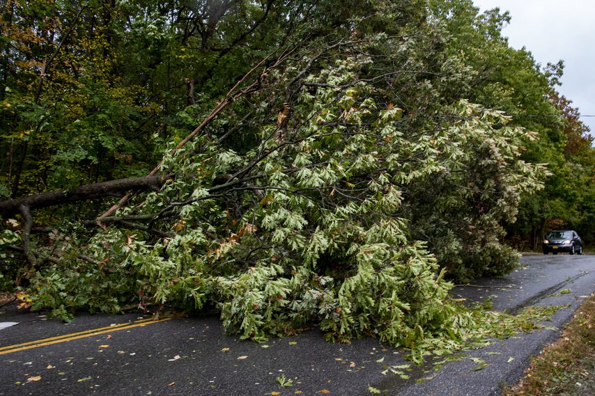 Gerling Street near Golf Avenue is completely blocked by a fallen tree during the derecho wind storm that swept through the region on Oct. 7.