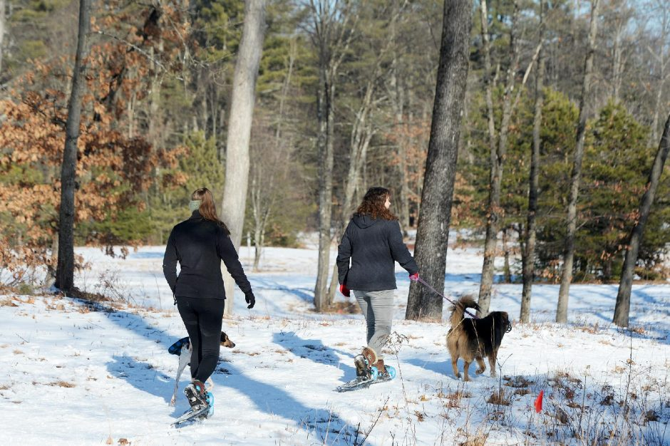 ERICA MILLER/THE DAILY GAZETTE People enjoy snowshoeing with their dogs on a trail at Wilton Wildlife Preserve in Wilton on Friday.