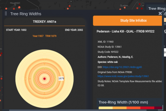 Tree rings help measure climate change. Part of an image from a tool  developed by the state University at Albany Visualization and Informatics Lab.
