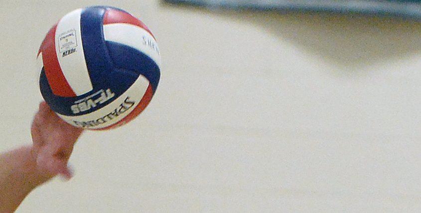 VolleyBALLshenshaker96.jpg