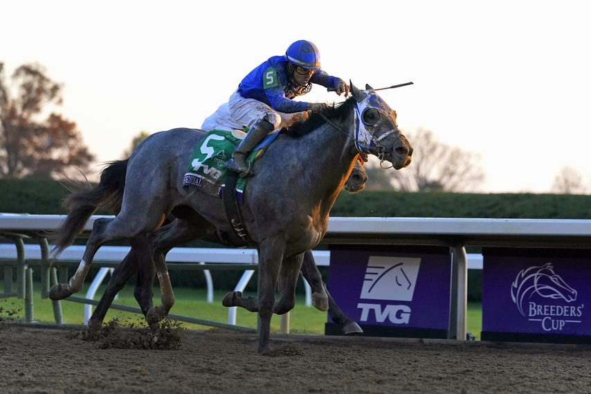 MICHAEL CONROY/THE ASSOCIATED PRESSEssential Quality and jockey Luis Saez win the 2020 Breeders' Cup Juvenile at Keeneland.
