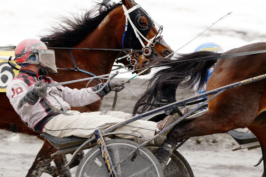 ERICA MILLER/THE DAILY GAZETTE Harness racing at Saratoga Casino will be open to spectators on Monday.