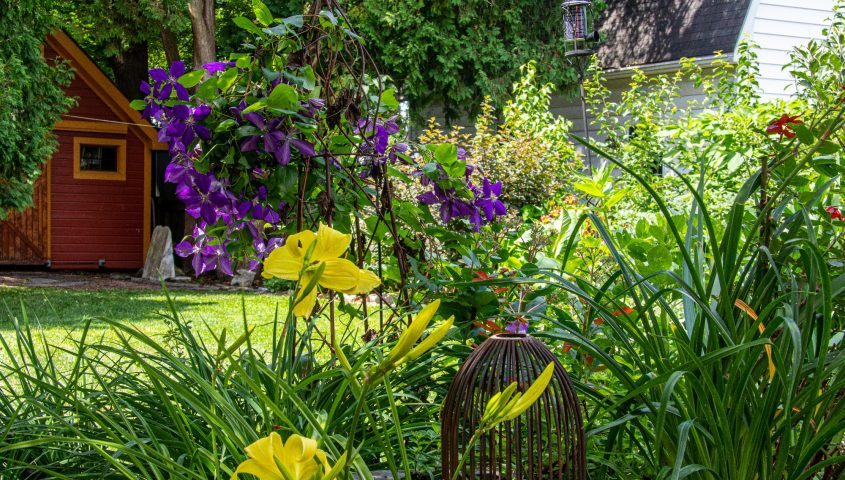 The tour on Sunday will offer colorful images, such as this Saratoga County garden scene.