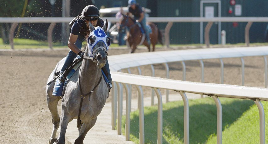 Essential Quality, under exercise rider Jose Gallego, gets his first breeze on the main track at Saratoga on Saturday.
