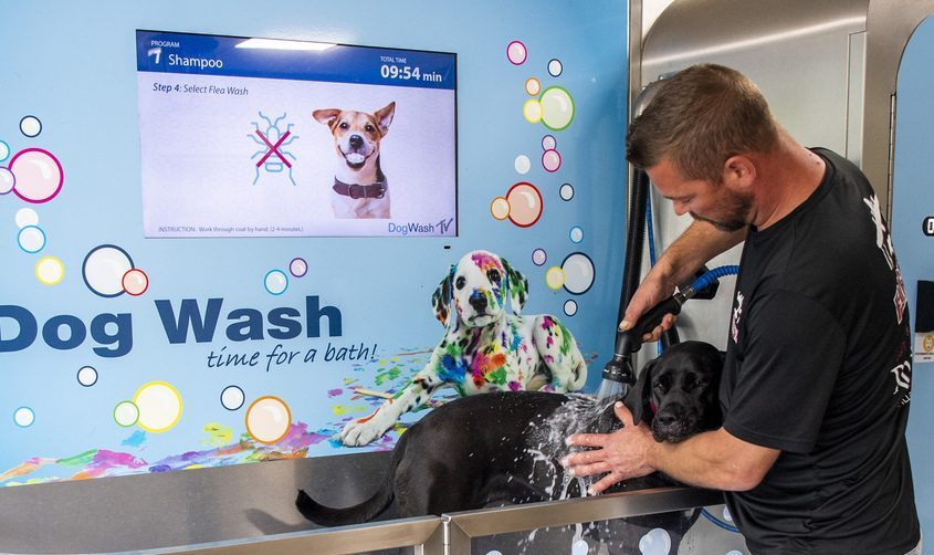 Pat Casey gives his dog, Nike, a bath at Gator'sBarks N Bubbles Self-Service Dog Wash in Burnt Hills on Friday.
