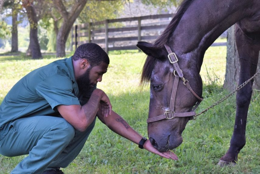 An inmate interacts with Quick Call as part of the Thoroughbred Retirement Foundation's Second Chances program at Wallkill Correctional Facility.