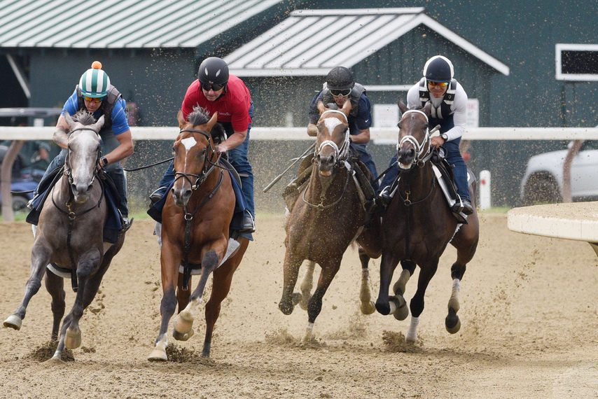 Malathaat, second from right, breezes in company with Zaajel, right, while encountering some other workers on the main track at Saratoga last Saturday.