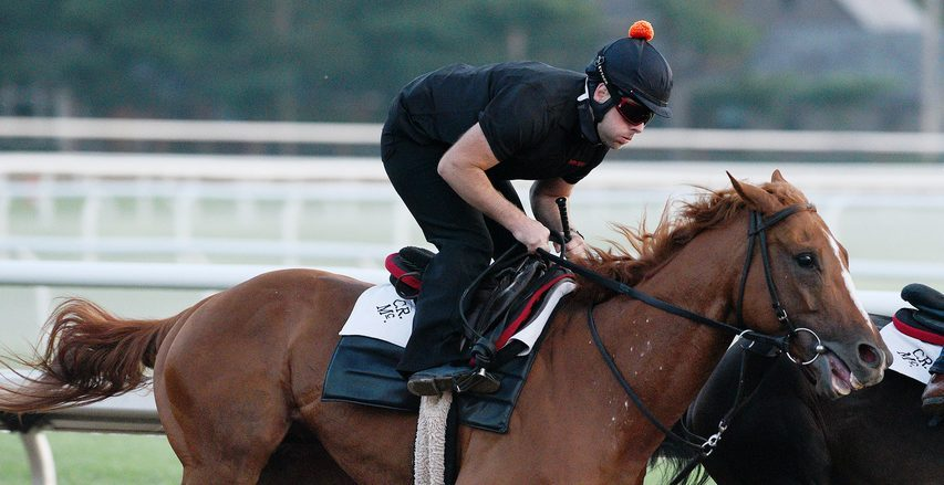 First Captain breezes a half-mile on the Oklahoma Training Track Saturday in preparation for Friday's Curlin.