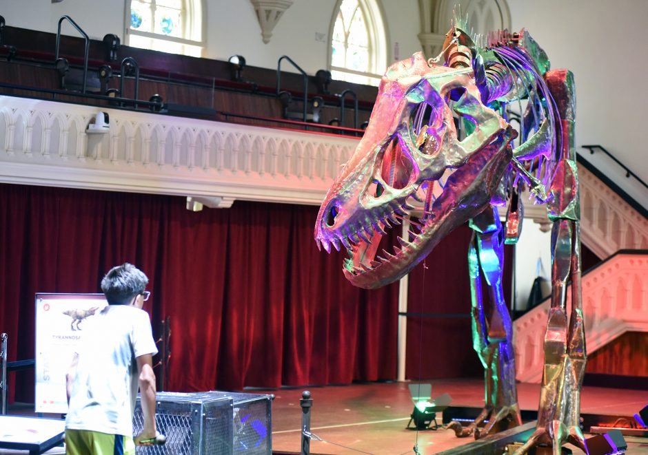 Tobias Prizio, 14, of Scotia puts a Tyrannosaurus Rex in motion as part of the Dinosaurs in Motion exhibit at the Universal Preservation Hall in Saratoga Springs.