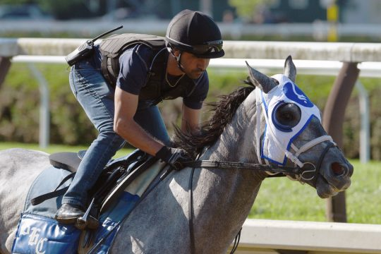 Belmont Stakes winner Essential Quality is the 1-2 morning-line favorite for Saturday's Grade II Jim Dandy at Saratoga.