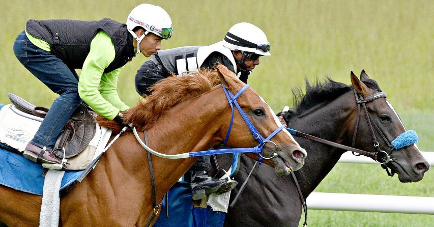 King Fury, ridden by Jose Ortiz (outside) works in company on the Oklahoma Training Track at Saratoga Race Course in Saratoga Springs on Sunday.