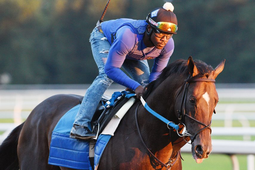Silver State, shown working on the Oklahoma Training Track on July 10, is one of five horses in the field for Saturday's Whitney.