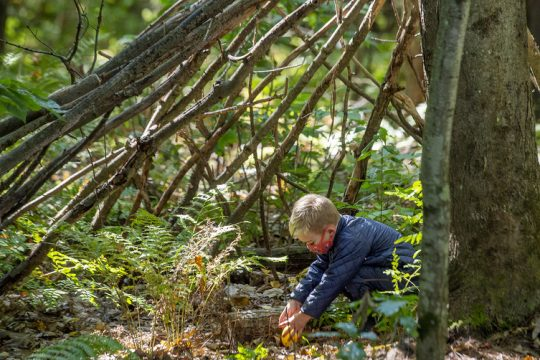 Pre-K student Milo Lamb, 4, plays in the woodland classroom at the new Little Wings FarmSchool in Greenfield on Wednesday, Sept. 29.
