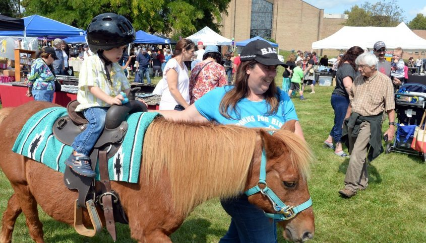 Pony rides for kids will be among activities at Sunday's Carrot Festival.