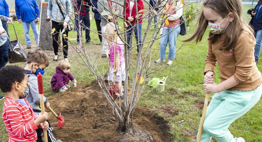 Zane Tatem, 3, left, and Madelyne Binkowski, 8, shovel top soil to the base of a newly-planted tree at the greenhouse in Schenectady's Central Park Tuesday.